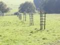 D.S. Garten- & Landschaftsbau Jagdreviergestaltung5