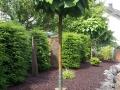 DS Garten- und Landschaftsbau_Komplettanlagen_4