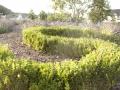 DS Garten- und Landschaftsbau_oeffentliche Anlage_5